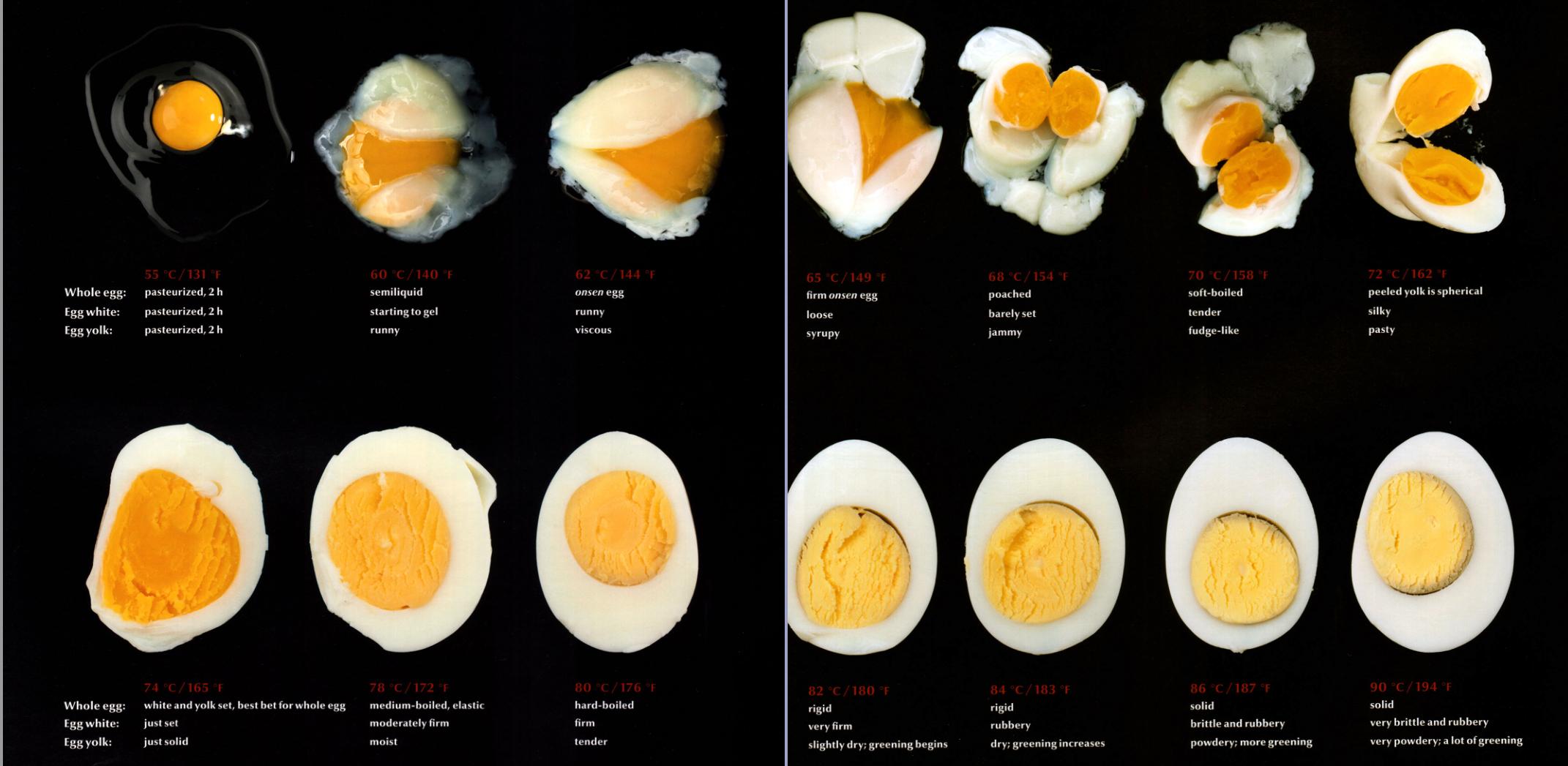 모더니스트 퀴진 앳 홈 계란.jpg